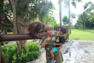 Bali Zoo 4