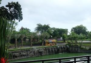 Bali Zoo 9